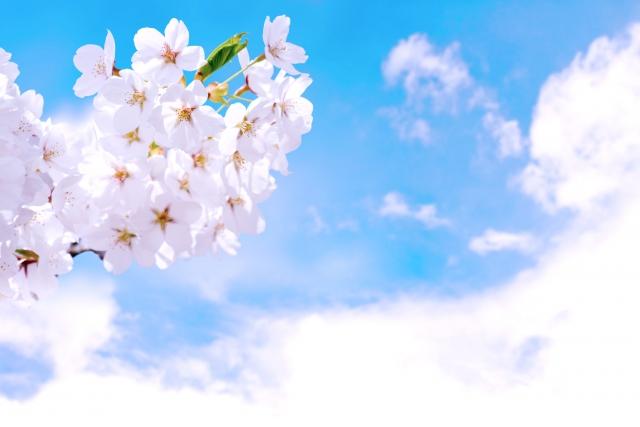 春・・・変えよう変わろう動きだそう!